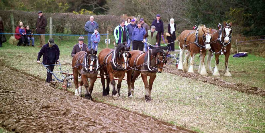 Horse Ploughing & country Skills Day – Saturday 17th February