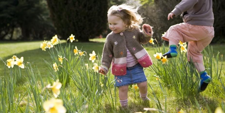 Spring has sprung at Rowallane Garden.